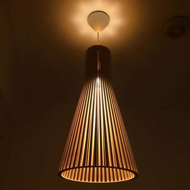 secto 4200 ceiling birch light